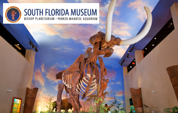 The South Florida Museum